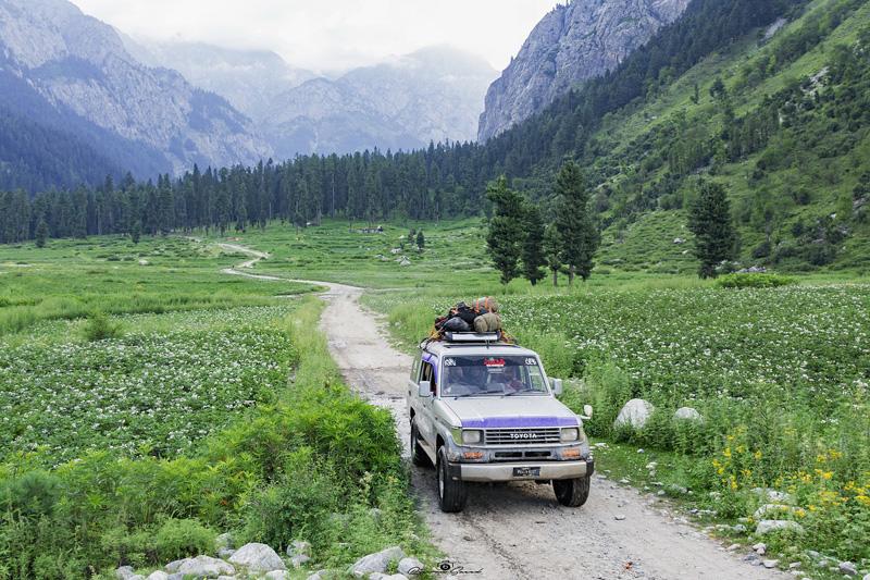 Utiliser des pesticides au Pakistan