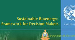 Bioenergy ONU