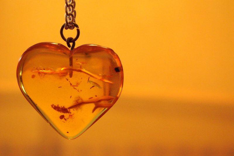 Conception innovante factory femme Acheter collier ambre : un collier ambre véritable ?