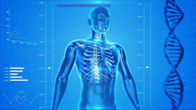 Silicium pour les os