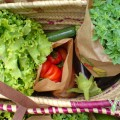 paniers-bio-legumes