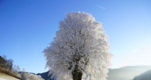 Couette pour l'hiver