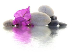 Detoxification de l'organisme : pour être zen