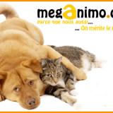 Méganimo, le bio pour chiens et chats