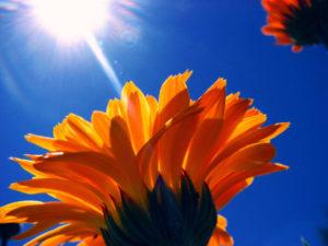 La chaleur de l'été arrive, et risque d'influer sur le sommeil