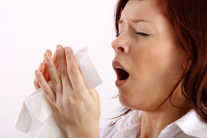 purificateur air allergies