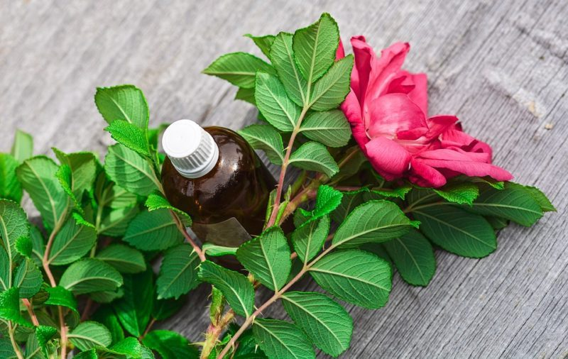 huiles essentielles biologiques