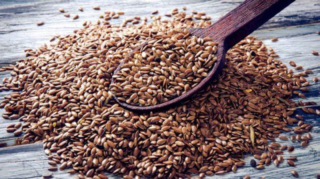 Protéine végétale : graine de lin brune