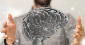 La neuroscience
