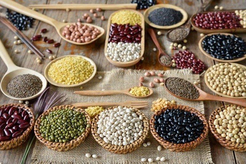 Protéines de végétaux
