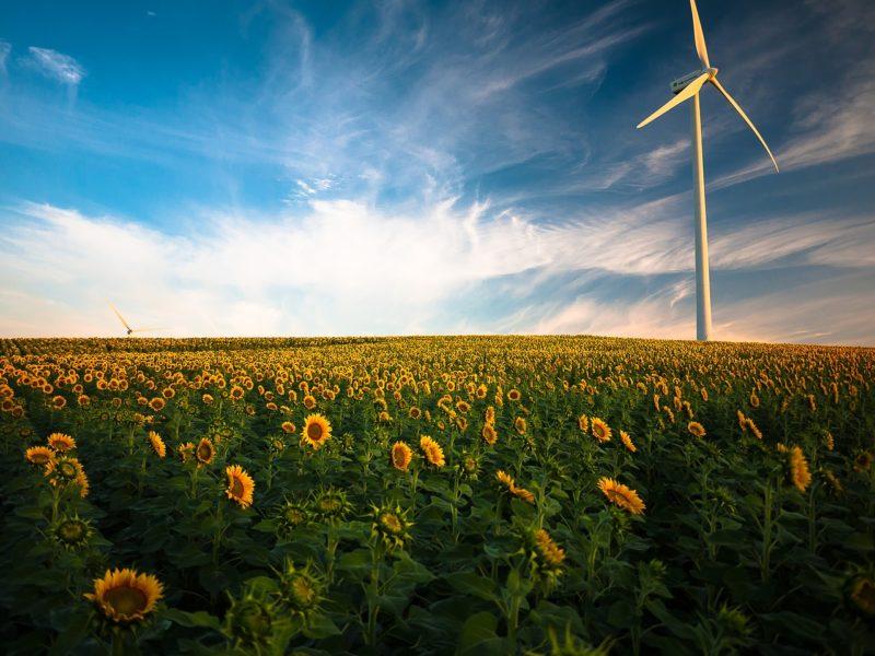 sensibiliser les jeunes aux économies d'énergies