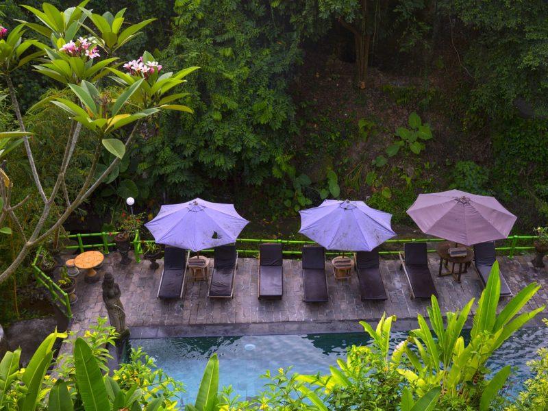 avantages de la piscine naturelle