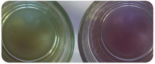 Ph de l'eau avec un robinet ionisée