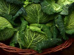 grossiste bio et chaine alimentaire