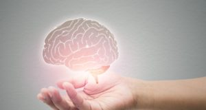 cerveau et THC
