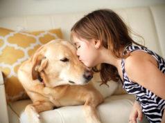 chien et bien-être