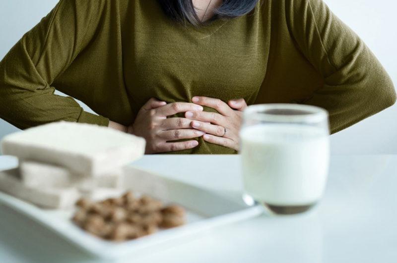 digestion lactose