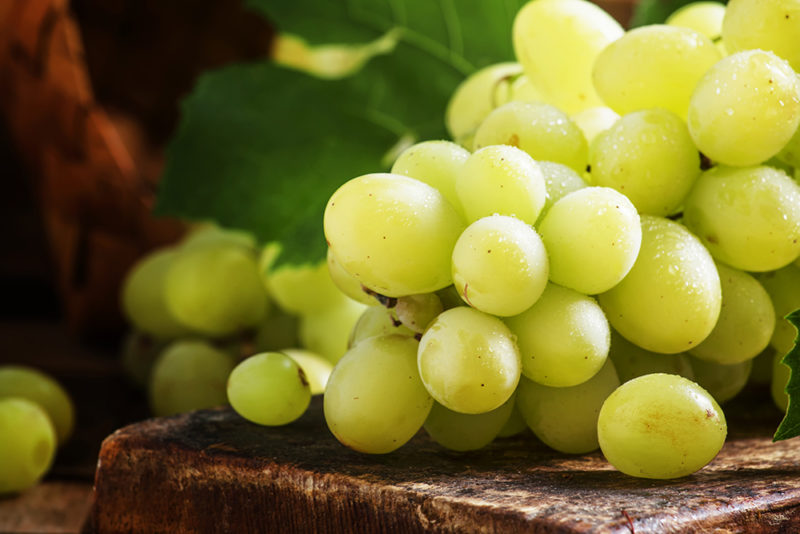 achat de vigne