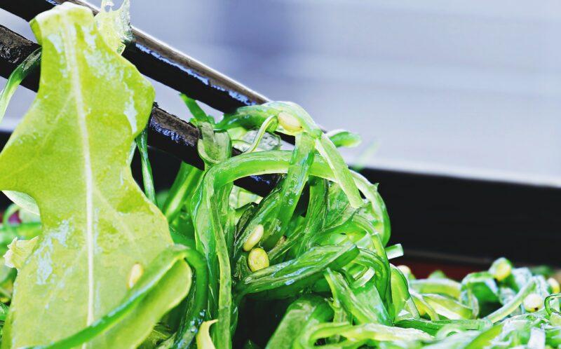 algues santé