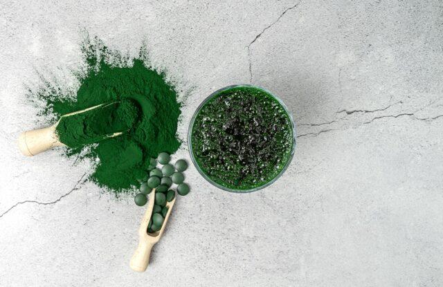 utilisations des algues
